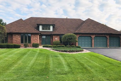 10531 Misty Hill Road, Orland Park, IL 60462 - MLS#: 09899898