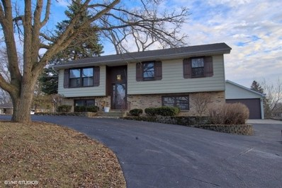 28581 W Channel Drive, Ingleside, IL 60041 - MLS#: 09900457