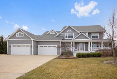 5365 Golden Rod Drive, Oswego, IL 60543 - MLS#: 09900726