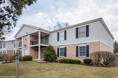 977 Golf Course Road UNIT 4, Crystal Lake, IL 60014 - #: 09900840