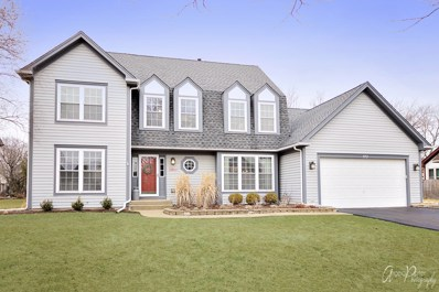 572 Waterford Drive, Grayslake, IL 60030 - MLS#: 09901980