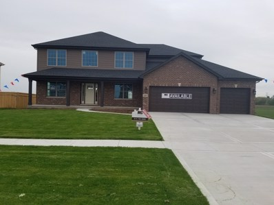 1489 S Saddlebrook Lane, Minooka, IL 60447 - #: 09902848
