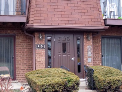 710 Cobblestone Circle UNIT C, Glenview, IL 60025 - MLS#: 09904633
