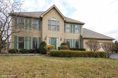 2004 Yellowstar Court, Naperville, IL 60564 - #: 09905578