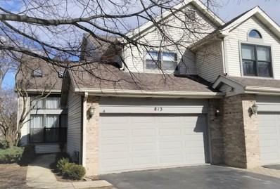 813 N Auburn Woods Drive, Palatine, IL 60067 - MLS#: 09906471
