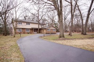 16 Fox Lane, Palos Park, IL 60464 - #: 09906768