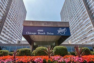 4800 S Chicago Beach Drive UNIT 1812S, Chicago, IL 60615 - #: 09907010