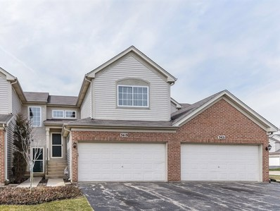 3419 Blue Ridge Drive UNIT 3419, Carpentersville, IL 60110 - MLS#: 09907419