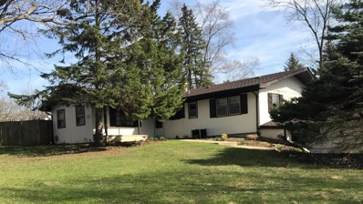 1100 Plaza Drive, New Lenox, IL 60451 - MLS#: 09908507