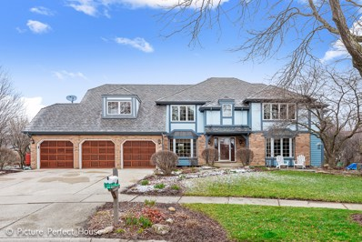2646 Copperfield Court, Naperville, IL 60565 - MLS#: 09908538