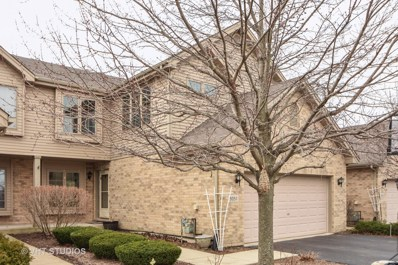 9051 Newcastle Court, Tinley Park, IL 60487 - MLS#: 09908760