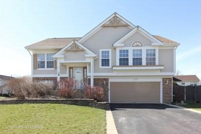 1740 Somerfield Lane, Crystal Lake, IL 60014 - #: 09908872