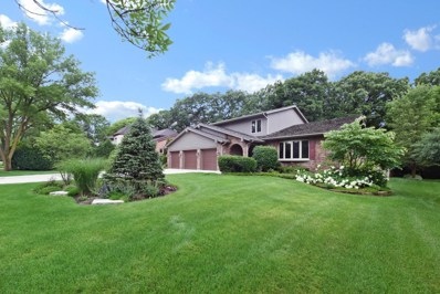 813 Red Stable Way, Oak Brook, IL 60523 - MLS#: 09909423