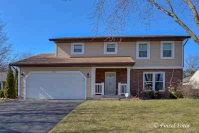 853 Pleasant Street, Woodstock, IL 60098 - #: 09909500