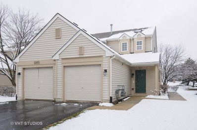 2203 Waterleaf Court UNIT 201, Naperville, IL 60564 - MLS#: 09911989