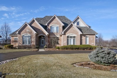 1519 BULL VALLEY Drive, Woodstock, IL 60098 - #: 09912599