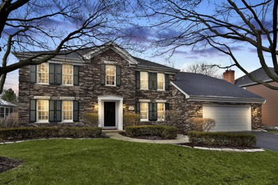 1173 Kenilworth Circle, Naperville, IL 60540 - MLS#: 09912697