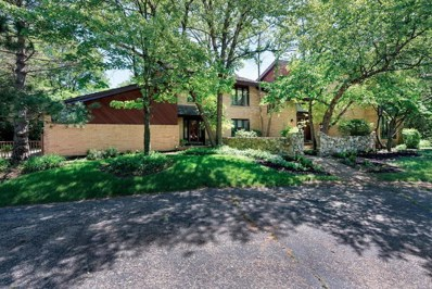 213 Indian Trail Road, Oak Brook, IL 60523 - #: 09913331