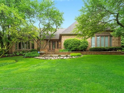 502 Robinwood Lane, Wheaton, IL 60189 - #: 09913645