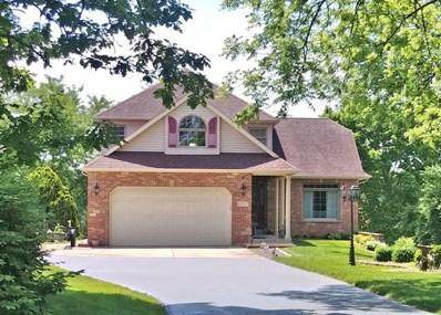 1157 Lady Bird Drive, Lake Holiday, IL 60552 - #: 09914243