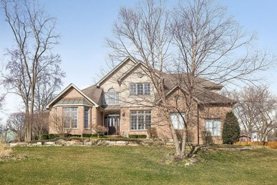 13506 W Little Creek Drive, Homer Glen, IL 60491 - MLS#: 09914522