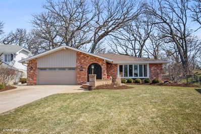 7252 W Pottawatomi Drive, Palos Heights, IL 60463 - #: 09915340