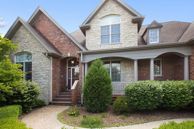 12462 Anand Brook Drive, Orland Park, IL 60467 - MLS#: 09915491