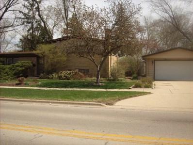 1319 N President Street, Wheaton, IL 60187 - MLS#: 09916527