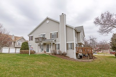 333 S COLLINS Street, South Elgin, IL 60177 - MLS#: 09917482