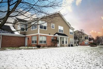 1458 Clybourne Street UNIT 14, Batavia, IL 60510 - MLS#: 09918066