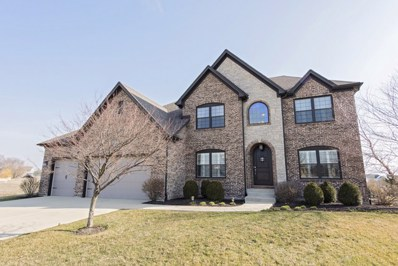 12817 Ridge Wood Lane, Plainfield, IL 60585 - MLS#: 09918594