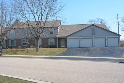 250 Crestview Drive UNIT A, Wauconda, IL 60084 - MLS#: 09918864