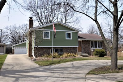 6000 Puffer Road, Downers Grove, IL 60515 - #: 09919161