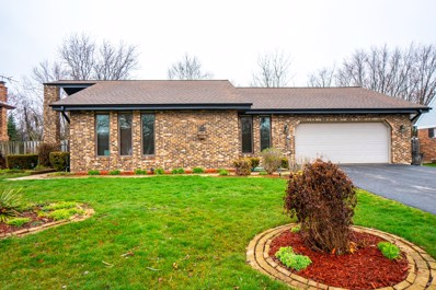 27 Hereford Drive, Crete, IL 60417 - MLS#: 09919501