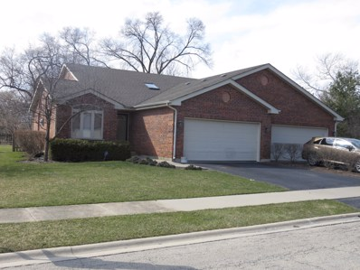 22006 Jordan Lane, Richton Park, IL 60471 - MLS#: 09919676