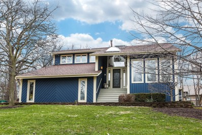 16244 Bluff Road, Lemont, IL 60439 - MLS#: 09920401