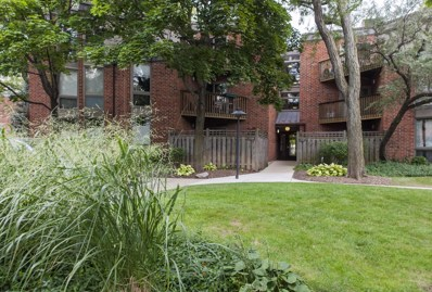 2131 N Larrabee Street UNIT 6101, Chicago, IL 60614 - MLS#: 09920602