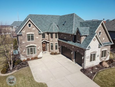 16485 CHRISTOPHER Drive, Lemont, IL 60439 - MLS#: 09922727