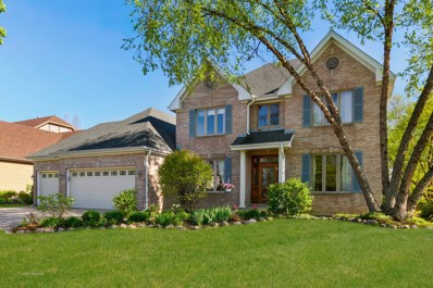 1229 Richfield Court, Woodridge, IL 60517 - MLS#: 09922826