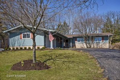 808 Skyline Drive, Barrington, IL 60010 - MLS#: 09922910