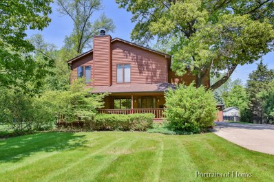 1501 E Forest Avenue, Wheaton, IL 60187 - #: 09923272