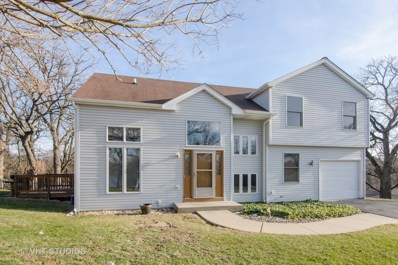 6018 Lakeview Drive, Cary, IL 60013 - #: 09923324