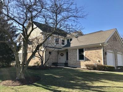 10645 Hollow Tree Road, Orland Park, IL 60462 - MLS#: 09924125