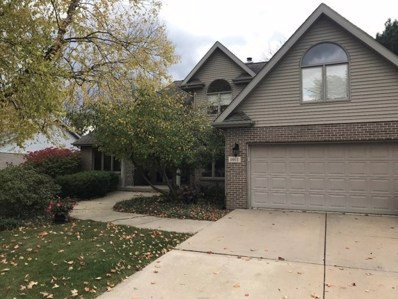 1011 Erins Glen Drive, Joliet, IL 60431 - MLS#: 09925250