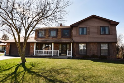 13010 S Sioux Lane, Palos Heights, IL 60463 - MLS#: 09925337