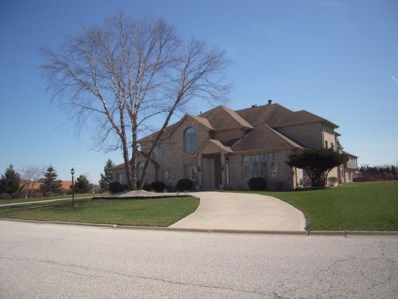 20003 MOHAWK Trail, Olympia Fields, IL 60461 - MLS#: 09925751