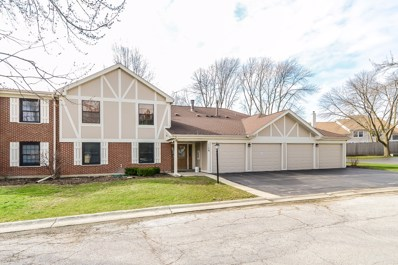 1159 MIDDLEBURY Lane UNIT D1, Wheeling, IL 60090 - MLS#: 09926554