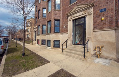 4055 S Calumet Avenue UNIT 1S, Chicago, IL 60653 - MLS#: 09929200