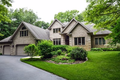 11103 Hill Crest Lane, Marengo, IL 60152 - #: 09929477
