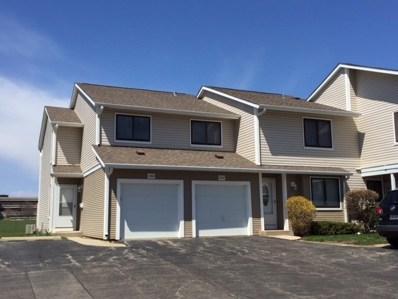 1060 E Randville Drive, Palatine, IL 60074 - MLS#: 09930180